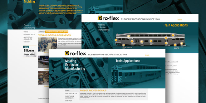Site Internet Proflex